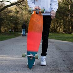 """Osprey Wood Grad 40"""" longboard skateboard"""
