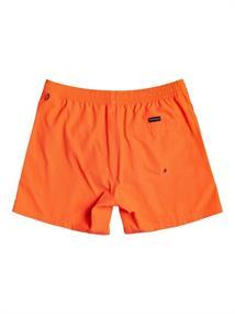 "Quiksilver Everyday 13"" - Swim Shorts for Boys 2-7"